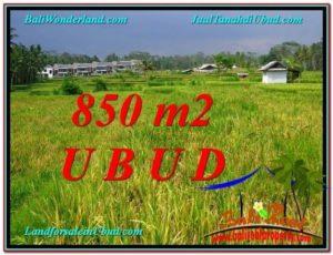 Exotic PROPERTY 850 m2 LAND SALE IN Ubud Pejeng TJUB583