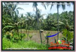 Affordable LAND SALE IN Sentral / Ubud Center BALI TJUB642
