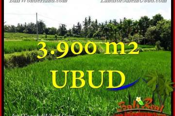 Beautiful PROPERTY 3,900 m2 LAND SALE IN UBUD BALI TJUB658