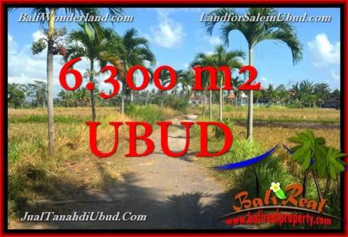 FOR SALE Magnificent 6,300 m2 LAND IN UBUD TJUB662