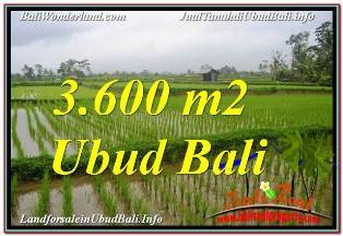 Affordable PROPERTY 3,600 m2 LAND SALE IN UBUD TEGALALANG TJUB673