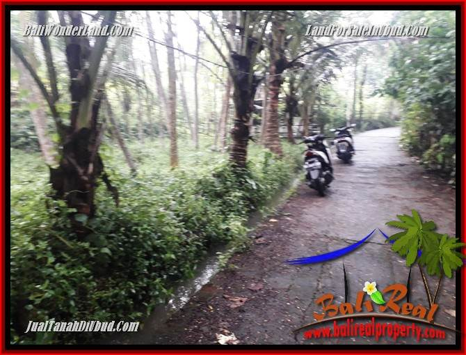 Exotic Property 438 m2 Land sale in Ubud Pejeng TJUB689