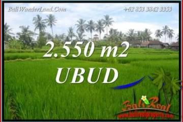 Ubud Pejeng Bali Land for sale TJUB700