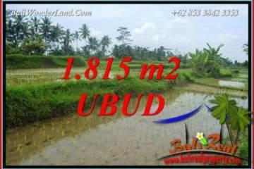 Exotic Property 1,815 m2 Land in Ubud Pejeng for sale TJUB703