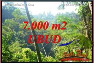 FOR sale Land in Ubud Tegalalang Bali TJUB714