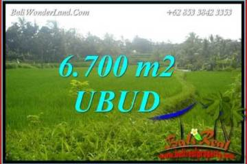 Beautiful Property Land for sale in Ubud Bali TJUB731
