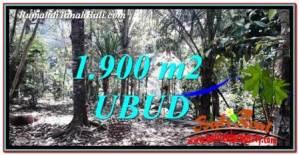 Affordable PROPERTY UBUD LAND FOR SALE TJUB755