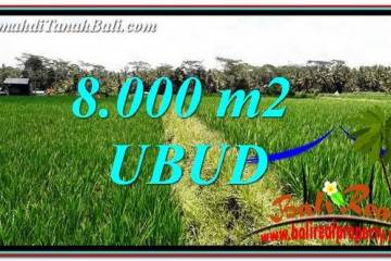 Beautiful LAND IN UBUD FOR SALE TJUB763