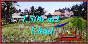 Magnificent PROPERTY 1,500 m2 LAND FOR SALE IN Ubud Tegalalang BALI TJUB744