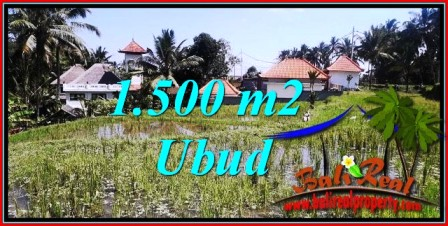 FOR SALE Exotic PROPERTY 1,500 m2 LAND IN Ubud Tegalalang TJUB744
