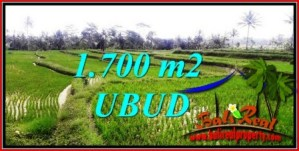 Beautiful PROPERTY LAND SALE IN UBUD BALI TJUB745