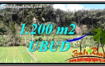 1,200 m2 LAND FOR SALE IN Ubud Tegalalang TJUB746