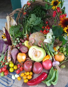 Picture of heirloom vegetables