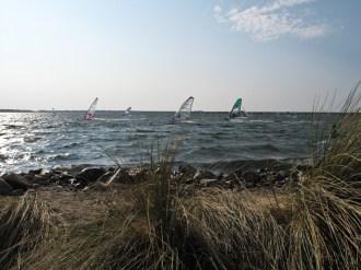 Noch einmal Windsurfen in Brouwersdam