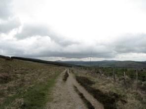 Von Roundwood nach Glendalough