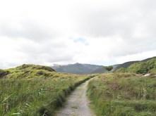 Unterwegs im Killarney Nationalpark