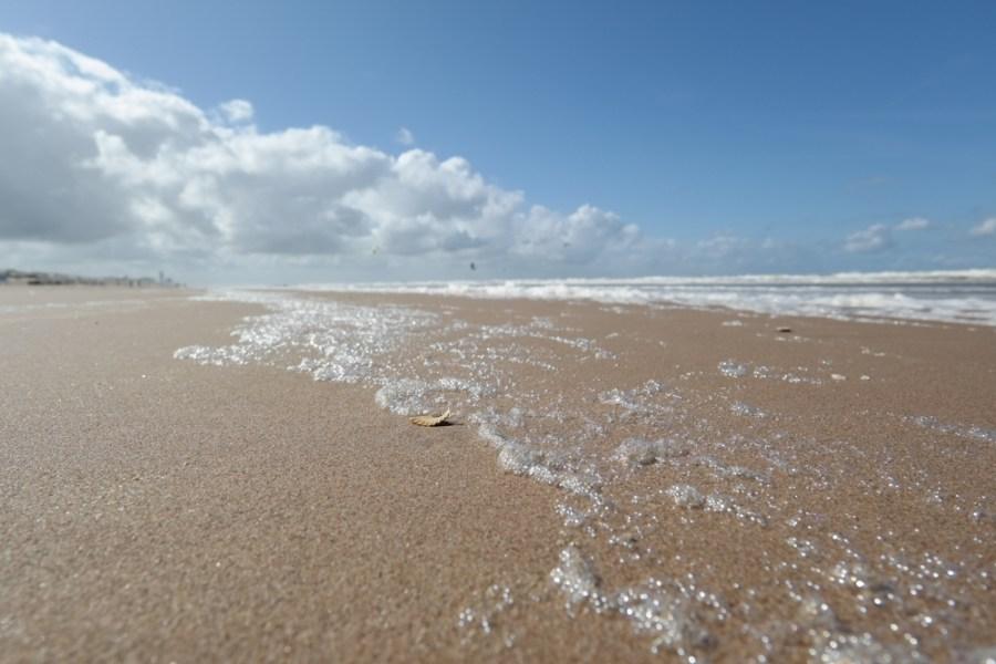 Bloemendaal aan Zee