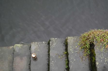 Der Hafen von Galway: Corrib trifft Meer