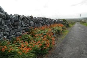 Durch die Burren von Fanore bis Doolin