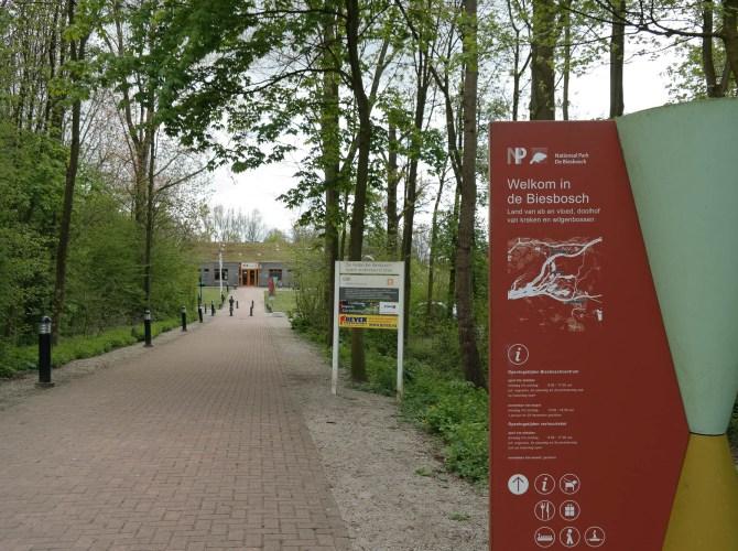 Zu Fuß, im Boot, per Rad… aktiv unterwegs in De Biesbosch