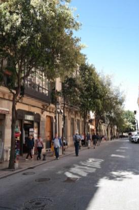 Mediteranes Flair in der Altstadt