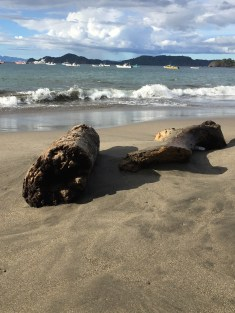 Costa Rica: Playa Hermosa