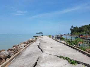 Die Natur sucht sich ihren Weg (Nang Kam Beach)