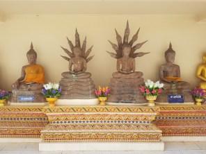 Für jeden Tag einen Buddha