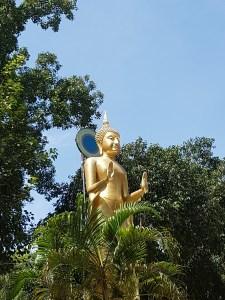 Der Buddha für den Tag Montag