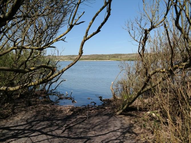 Ein Überflutungsgebiet wird zum Naturreservat
