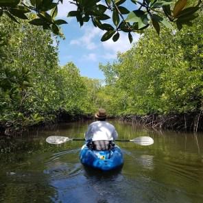 Koh Jum - Mangroven Kajak Tour