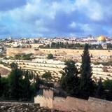 Jerusalem Tours 160 X 160