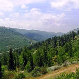 Judean Hills tour