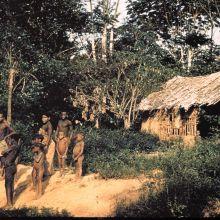 Belgian Congo Tribe near Beni