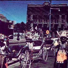 Rickshaws in Durban