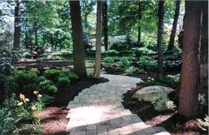 Garden Ideas For Wooded Areas   Architecture Decorating Ideas on Wooded Backyard Ideas id=67815