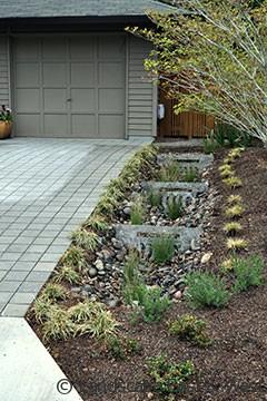 Landscape Design: Low-Maintenance Tips on Landscape Drainage Design  id=98831