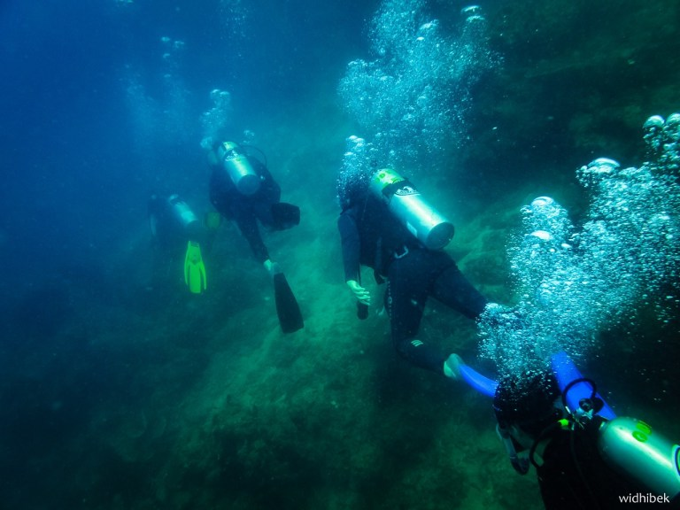 bawah laut 2 - My Path to Become Dive Master
