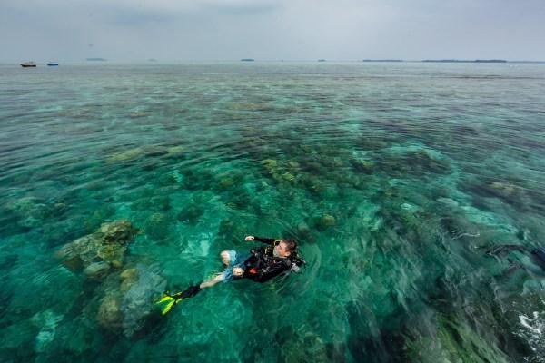 bawah laut 8 - Selamat Datang di Bawah Laut