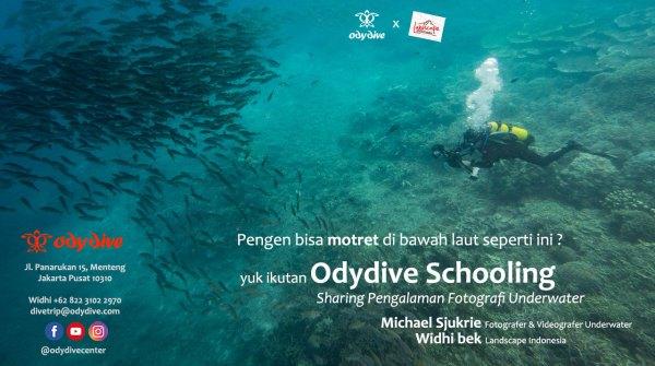 odydive scholing - Odydive Schooling: Sharing Pengalaman Memotret Underwater