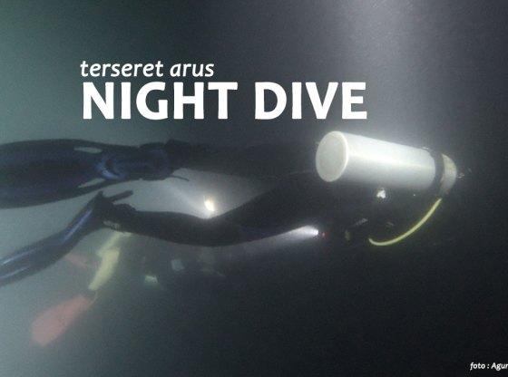 night dive 1 - Kaleidoskop Perjalanan 2018