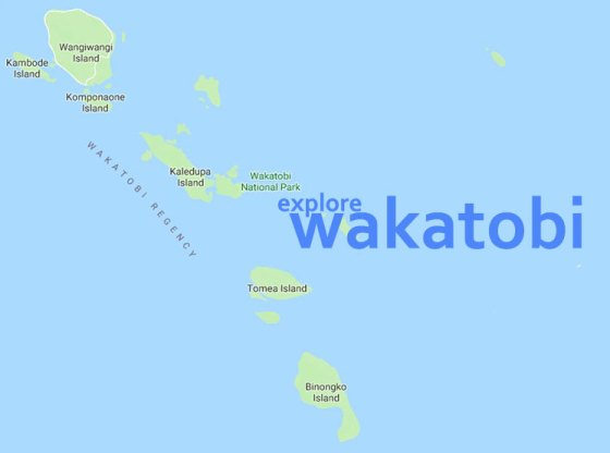 explore wakatobi 1 1 - Menikmati Pesona Wakatobi