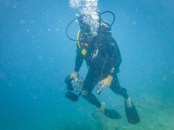 IMG 6737 3 - Masker Diving Minus di  Wakatobi