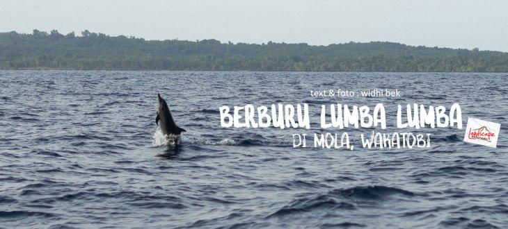"lumba lumba mola wakatobi 09a - ""Berburu"" Lumba Lumba di Bajo Mola"