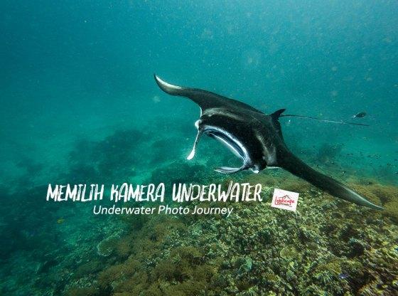 memilih kamera underwater - Memilih Kamera Underwater | Underwater Photo Journey