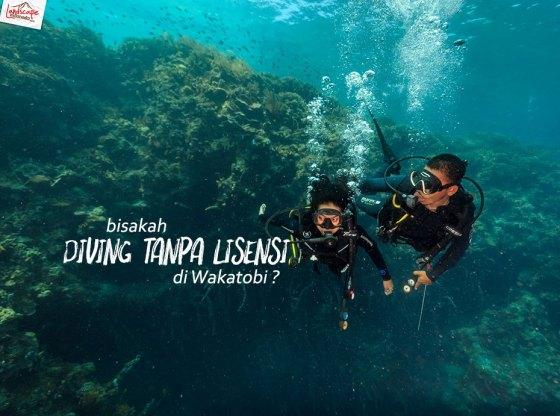 tryscuba wakatobi 0 - Bisakah Diving Tanpa Lisensi di Wakatobi ?