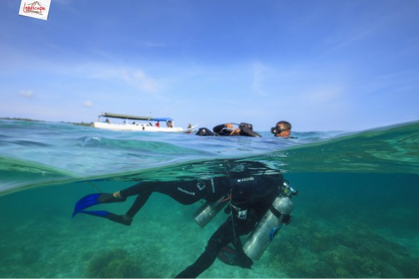 tryscuba wakatobi 01 1024x683 - Discovery Scuba Diving di Wakatobi