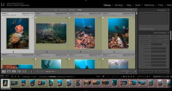 Screenshot 146 1024x544 - Komodo Journey : Liveaboard Live - 1