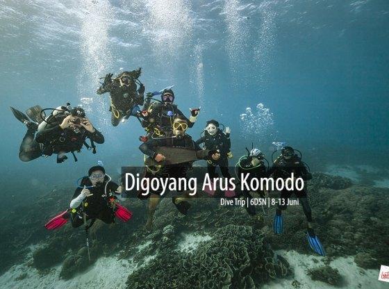 komodo 6 0 - Digoyang Arus Komodo | Dive Trip | 6D5N | 8-13 Juni