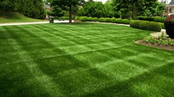 Lawn_Care_Service_CT